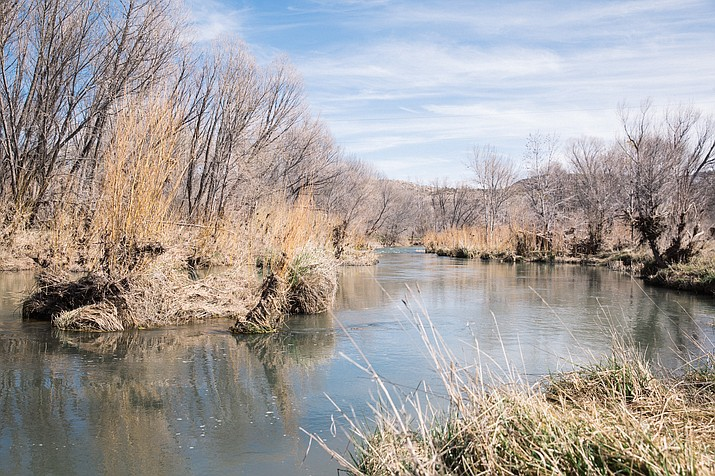 The Verde River, which flows more than 170 miles, starts in north-central Arizona and winds down into the Phoenix area, where it empties into the Salt River. The Verde River Watershed received a C+ grade overall, based on habitat, community and water conditions. (Photo by Michael Hannan/Cronkite News)