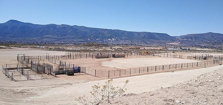 Camp Verde Arena Association Secretary Daria Weir updated council Wednesday on progress of the new equestrian center. The center's main arena, pictured, has been completely constructed. Courtesy photo