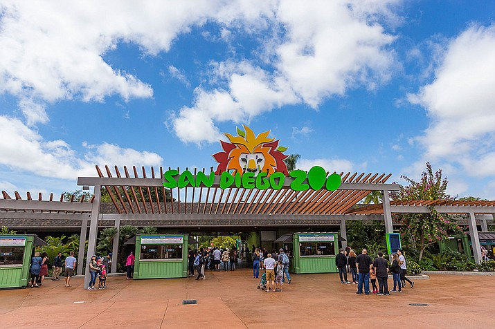 The San Diego Zoo – visit kids.sandiegozoo.org and see a plethora of videos and live feeds of animals, activities, games and more for kids.