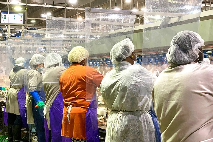 In this April 2020, photo provided by Tyson Foods, workers wear protective masks and stand between plastic dividers at the company's Camilla, Georgia poultry processing plant. Tyson has added the plastic dividers to create separation between workers because of the coronavirus outbreak. (Tyson Foods via AP)