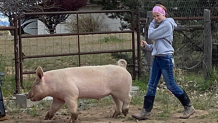 Kaylynn works hard in all that she does and takes responsibility for her actions. When she is not in school she is busy tending to and raising her pig Hamlot for online auction. (Courtesy)