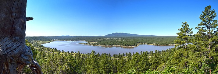 Lake Mary in Coconino National Forest. Many campgrounds and recreation sites are reopening in Coconino National Forest. (Photo/Brady Smith, USFS)