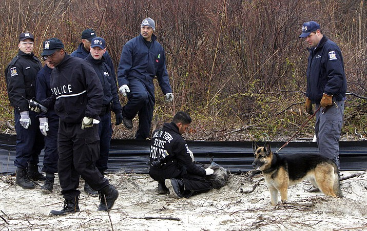 In this April 11, 2011, file photo, law enforcement and emergency personnel examine an object on the side of the road, center, near Jones Beach in Wantagh, N.Y. On Friday, May 22, 2020, authorities investigating the long-running mystery of skeletal remains strewn along a suburban New York beach highway said they have identified the remains of one of the women using DNA technology. (AP Photo/Seth Wenig, File)