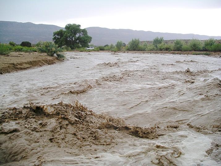 Dry Coyote Gulch wasn't dry on this day! (Nigel Reynolds/Courtesy)