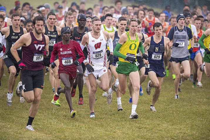 In this Nov. 23, 2019 photo, runners compete in the men's NCAA Division I Cross-Country Championships in Terre Haute, Ind. Four-year colleges facing budget shortfalls stemming from the coronavirus outbreak have eliminated a total of nearly 100 sports programs since March. (Doug McSchooler/AP, File)