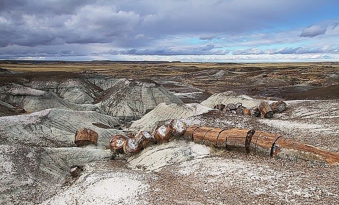 Blue Mesa Trail in Petrified Forest National Park.  (Photo/Adobe Stock)