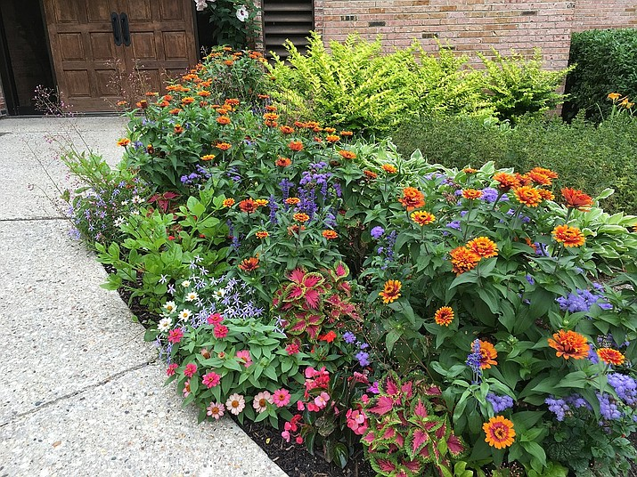 New plantings need special attention the first few weeks. Water thoroughly and often enough to keep the roots and surrounding soil slightly moist. (Melinda Myers, LLC/Courtesy)