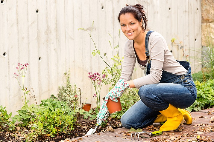 According to WebMD, gardening is a good way to whittle down your waistline. Thirty minutes of garden exercise (for a 180-pound person) burns calories for activities like planting seedlings, -162 calories; weeding, -182 calories; and general gardening, -202 calories. And with all that's going on in the world, this is the perfect time to take advantage of the gym growing right outside your front door. (Courier stock photo)