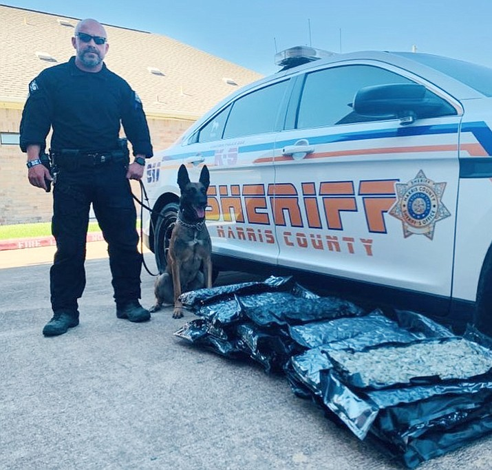 Officials in Texas were called to a Houston family's home when they received someone else's package containing 32 bags of marijuana. (Harris County Sheriff's Office)