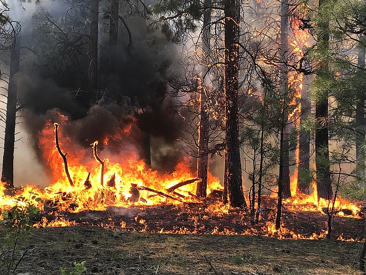 Extreme fire behavior has been seen on the Mangum Fire. (Photo/USFS)