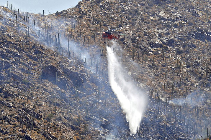 A Wildfire air attack crew douses saguaro cacti with water as they battle the Bighorn Fire, Friday, June 12, 2020, in Tucson, Ariz. Some scientists have long feared that the encroachment of buffelgrass into the Sonoran Desert would trigger massive, destructive fires from which native desert plants would never recover. (AP Photo/Matt York)