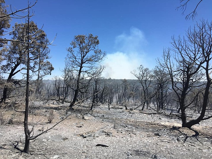 A lightning-caused fire is currently burning near Ash Fork. (Photo/DFFM)