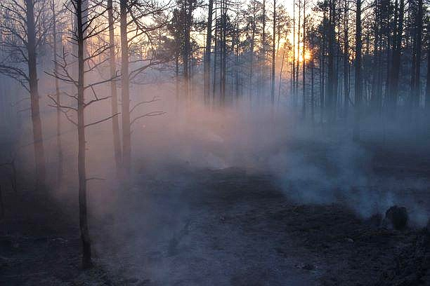 The Mangum Fire was reported June 8 and grew to 71,450 acres. As of July 6, it was 82 percent contained. (Photo/Inciweb)