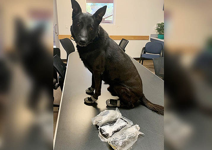 Cottonwood Police Department K-9 Kratos poses with three pounds, three ounces of what appears to be black tar heroin, seized after a Wednesday, July 8 traffic stop and arrest. Courtesy of Cottonwood Police Department