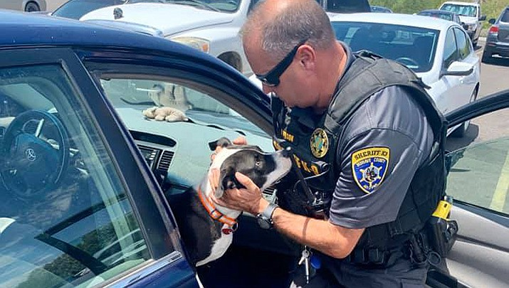 A Mohave County Sheriff's Office deputy rescues a hot dog from a hot car outside of a business in the 5200 block of Highway 95 in Fort Mohave on Tuesday, July 21. (MCSO photo)