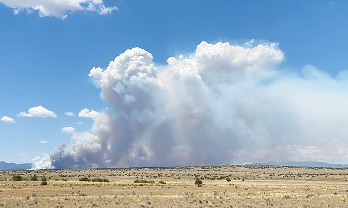 Perscribed burns, such as this one in the Graver area, are still taking place in Arizona, but significant rain this week helped wildland firefighters tremendously. Courtesy of U.S. Forest Service