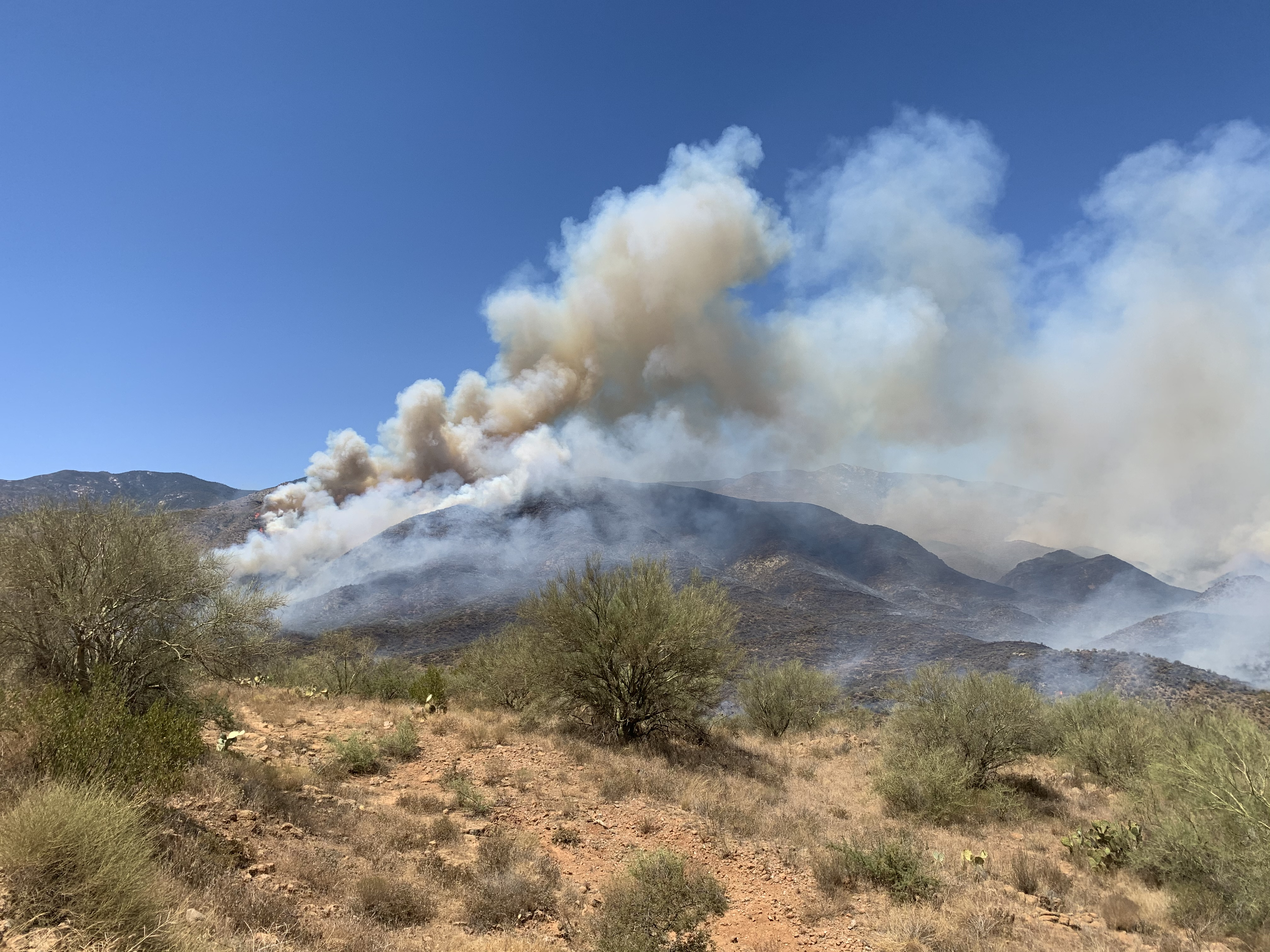 Fire on Bumblebee Road growing fast; not threatening, evacuations not necessary