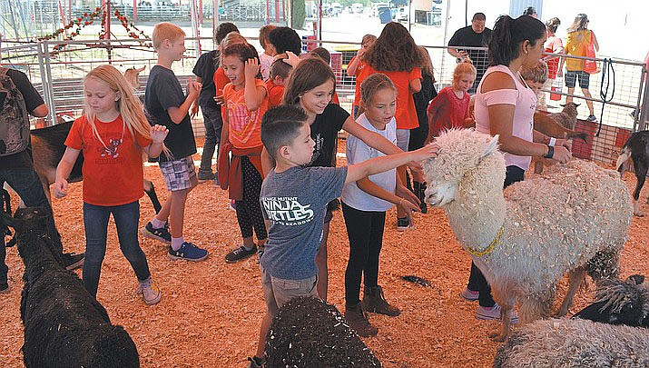 Children will have to wait another year to enjoy the animals at the Mohave County Fair. The 2020 fair has been cancelled due to coronavirus concerns. (Miner file photo)