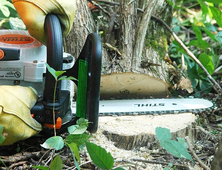 Chainsaws are a valuable tool but are also dangerous and can cause serious injuries. (James H. Miller, USDA Forest Service, Bugwood.org)