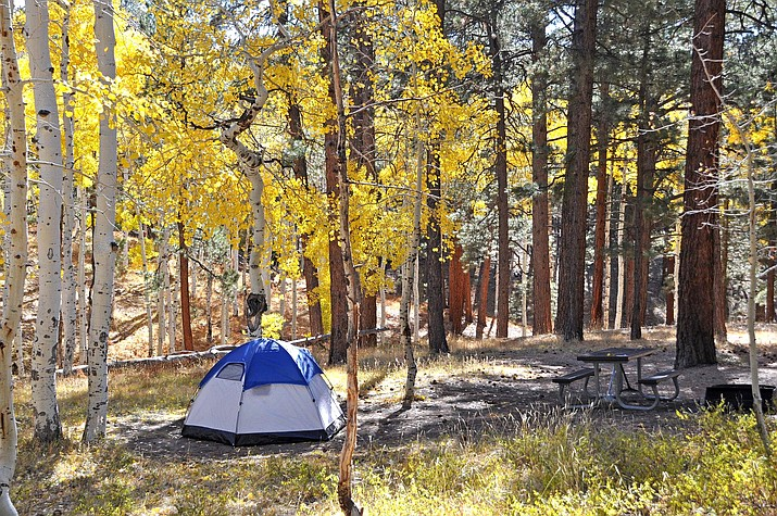 Fall colors in the North Rim Campground. (NPS Photo/Michael Quinn)