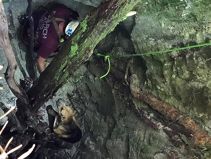 In this photo provided by the Burke County Rescue Squad, a member of the Burke County Rescue Squad rescues a dog trapped 30 feet (9 meters) down in a sinkhole, Sunday, Sept. 20, 2020, at Pisgah National Forest in Morganton, N.C. The dog was not injured, but was starving and dehydrated, according to the rescuers. (Burke County Rescue Squad via AP)