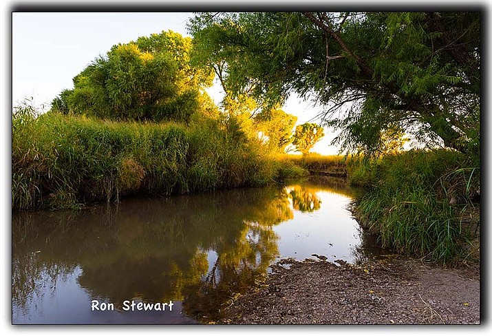 Shown is the San Pedro River. The Center for Biological Diversity, an  environmental group is going to court to force Fort Huachuca to release documents it says shows the base is hiding reports of how its groundwater pumping is damaging the San Pedro River. (Friends of the San Pedro River Facebook image.)