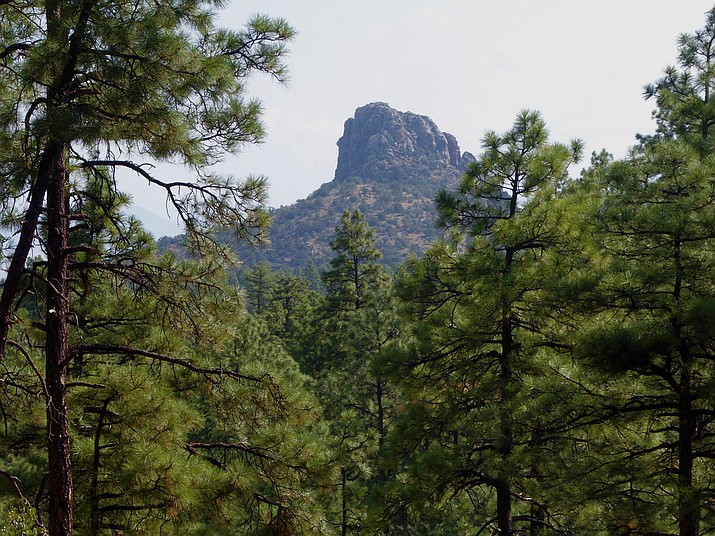 Thumb Butte outlined by ponderosa pines. (Nigel Reynolds/Courtesy)