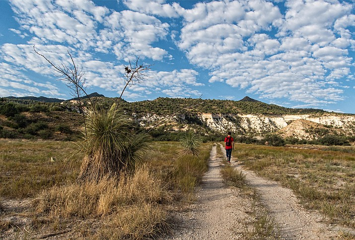 Ryal Canyon Trail starts with a level, one-quarter mile trek before a 600-foot climb up the side of the canyon over the next one-half mile. Photo courtesy Town of Camp Verde