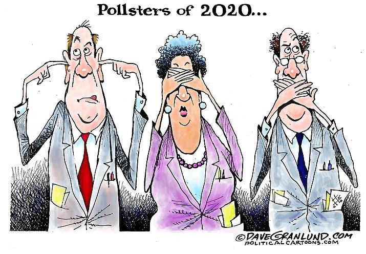 Editorial cartoon (2): Nov. 6, 2020