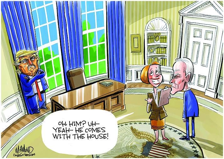 Editorial cartoon (2): Nov. 10, 2020