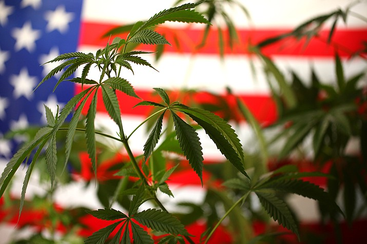 Arizona voters have passed the legalization of recreational marijuana, Nov.3. The measure also allows certain marijuana offenders to seek to have their criminal records expunged. (Stock photo)