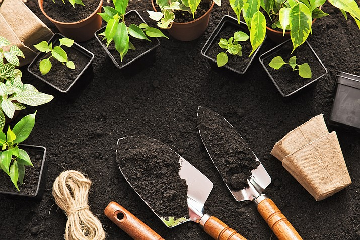 The Urban Farming Institute distrubted 19,000 pounds of food in 2019. The institute's mission is to advance commercial urban farming locally through education and land development. (Courier stock photo)