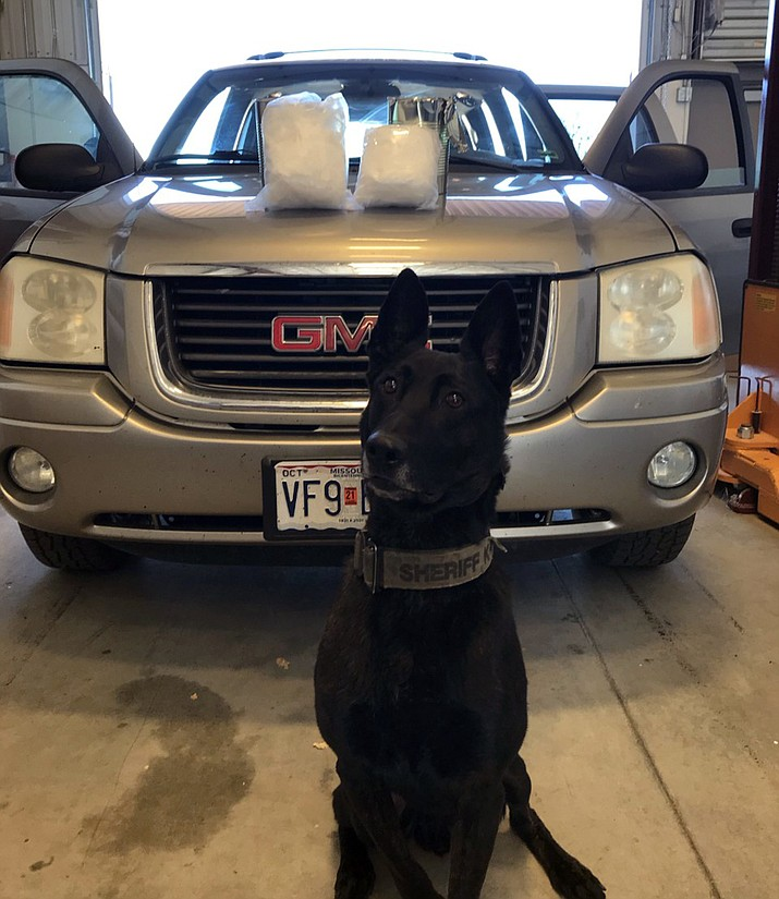 """Yavapai County Sheriff's (YCSO) K9 """"Max"""" poses in front of a vehicle and the 10 pounds of meth he detected during a traffic stop on east Interstate 40 on Thursday, Nov. 19, 2020. (YCSO)"""