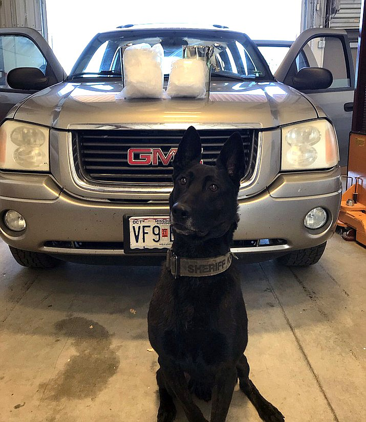 """K9 """"Max"""" poses in front of a vehicle and 10 pounds of meth he detected on a traffic stop on I-40 Nov. 19. (Photo/YCSO)"""