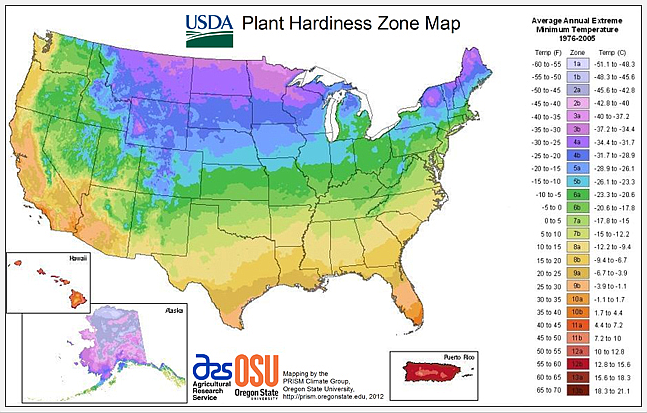 Gardeners rely on USDA Hardiness Zone Maps to tell them which plants survive and thrive locally. (USDA/Courtesy)