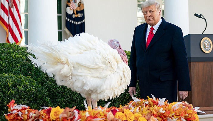 President Donald Trump conducts a turkey pardon ceremony. (White House photo/Public domain)