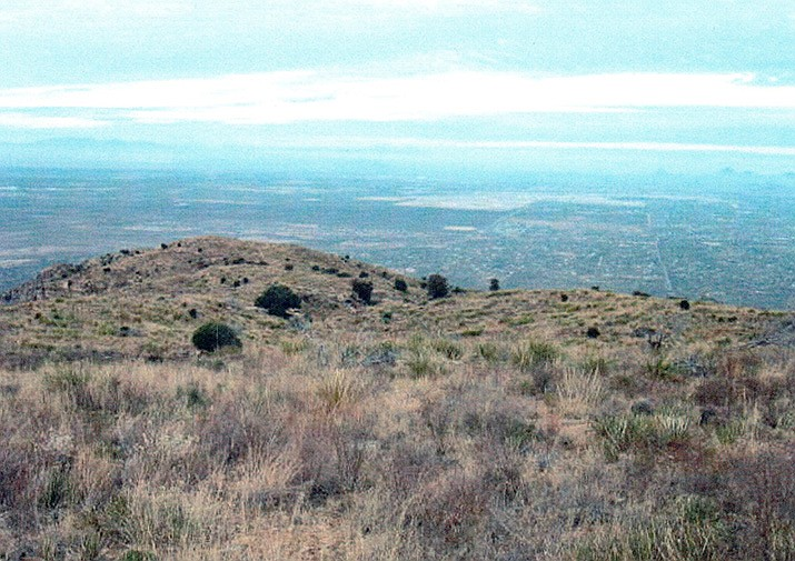 The view from the Tanque Verde Ridge Trail. (Courtesy)