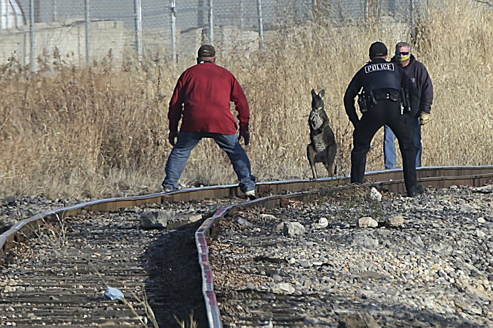 Peru Police officers and other volunteers help corner Wally the Wallaroo on the train tracks behind Maze Lumber, Wednesday, Dec. 2, 2020, in Peru, Ill. Wally escaped from his owner Nathan Drewel in Peru shortly after 1 p.m. on Wednesday. Wally jumped into the Illinois River and was rescued by a random fishing boat who scooped him up in a fishing net and was transported to Bridgeview Animal Hospital in Peru for treatment. (Scott Anderson/NewsTribune via AP)