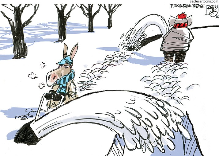 Editorial cartoon (1): Dec. 21, 2020