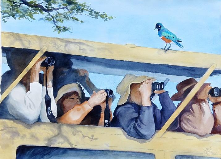 Bird Watching, award winner from Joyce Killebrew.