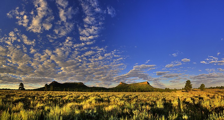 The sun rises over Bears Ears illuminating its iconic bears ears. Tribal leaders are hoping President Joe Biden restores the boundaries of the national monument, but say that should only be the beginning of a commitment to protect public lands. (Photo/Tim D. Peterson)