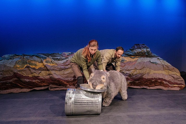 Yavapai College Performing Arts Center's (YCPAC) Curtain Up Education Series (CUES) will feature Diary of a Wombat Feb. 7-20. (Robert Catto, Yavapai College/Courtesy)