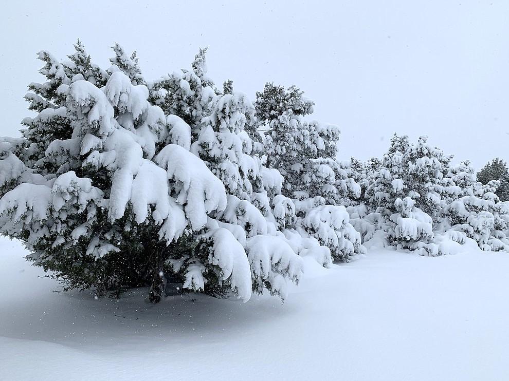Snow in Williamson Valley. Photo by Bonny Martignoni.