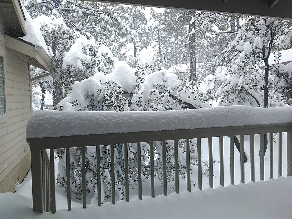 Snow in our back yard on Ravens Court in the Timber Ridge development off Copper Basin Rd. Photo by Pamela Geisel.
