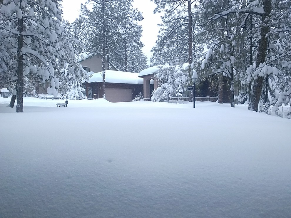 This is our driveway on Ravens Court in the Timber Ridge development off Copper Basin Rd. A good 18 inches. And there's a road between the driveway and the house across the street but you'd never know from this picture. Photo by Pamela Geisel.