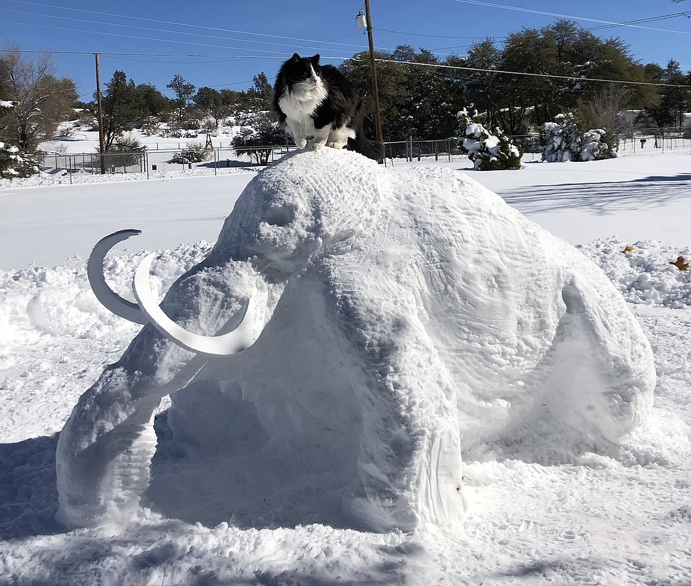 Ahogo decided to make a snow Woolly Mammoth out of the snow that fell in our yard. Photo submitted by Shogo Shinohara.