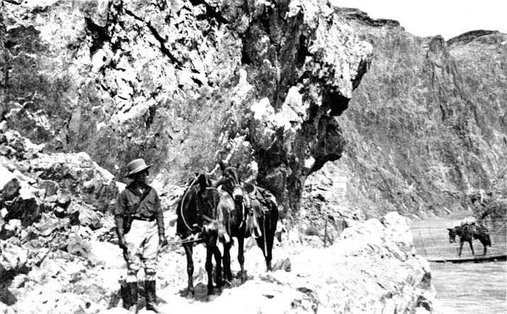 Mules and a rider descend the Kaibab Trail near the Colorado River around the time of its construction. (Photo/NPS)