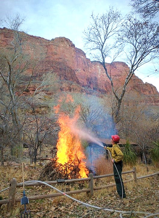 A wildland firefighter uses a hose to manage an ignited woody debris pile in the Indian Garden Campground. (Photo/NPS)