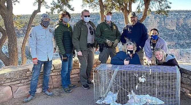 Yavapai Humane Trappers Animal Search and Rescue, Grand Canyon National Park biologists and other volunteers celebrate the recovery of a lost dog on the South Rim of Grand Canyon National Park. (Photo/Yavapai Humane Trappers Animal Search and Rescue)