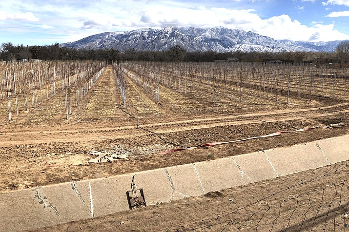 An empty irrigation canal at a tree farm in Corrales, New Mexico can be seen with the Sandia Mountains in the background. Much of the West is mired in drought, with New Mexico, Arizona, Nevada and Utah being among the hardest hit. (AP Photo/Susan Montoya Bryan)